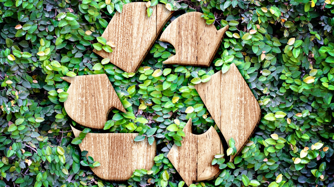 1_Green_Recycle_Titel