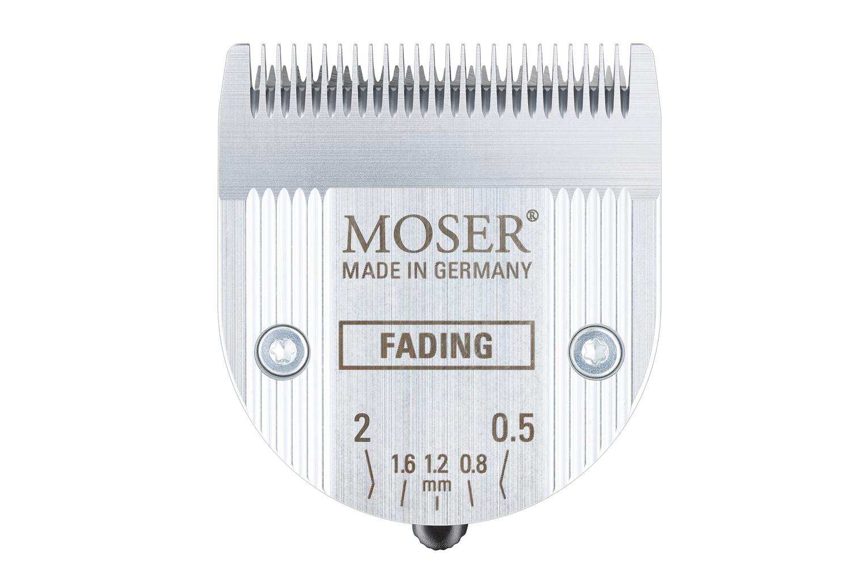 2_Green_Moser_Beitrag_quer